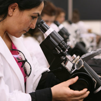 CSN students study with microscopes