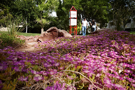Images from around the UNLV campus